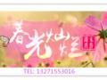 华东五市旅游线路_郑州到华东双飞6日游_去苏州杭州西湖旅游