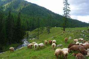 大连去新疆旅游_新疆丝绸之路6日品质游_大连去新疆旅游价格