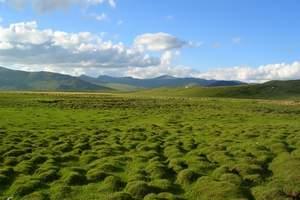 北疆小环线丨新疆天池、吐鲁番、喀纳斯双卧12日(淄博出发)