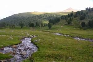 大连去新疆旅游多少钱_新疆丝绸之路品质6日游_大连去新疆旅游