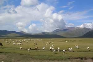 乌鲁木齐到伊犁那拉提、巴音布鲁克、喀拉峻、昭苏夏塔双卧五日游