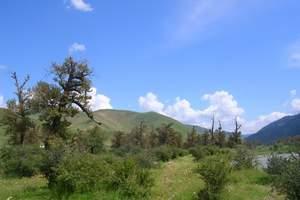 新疆伊犁那拉提、赛里木湖火车双卧4日游-赠送薰衣草园