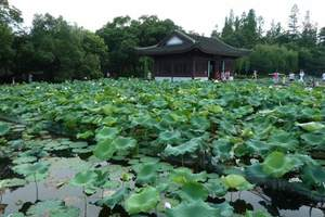 【特价旅游优惠线路】上海到杭州乌镇苏州无锡四日游