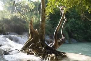 老挝琅勃拉邦古城·达光西瀑布·越南河内·水族馆·美食六天纯玩