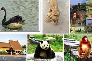 团体游推荐无锡欢乐园(动物园+游乐园)+海洋馆一日游