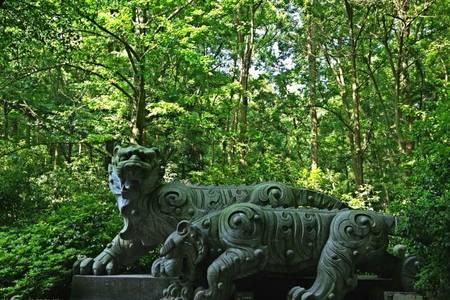 [杭州二日]西湖-三潭印月-虎跑-黄龙洞-宋城