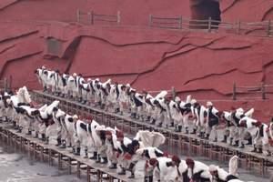 直飞丽江香格里拉五日|郑州到丽江旅游线路|郑州到香格里拉旅游