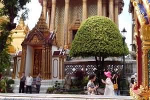 泰国曼谷双飞8日 不以任何形式推荐自费 赠流量卡意外险