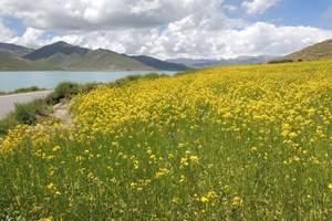 到西藏拉萨、纳木错、日喀则羊湖、扎什伦布寺四卧十日游