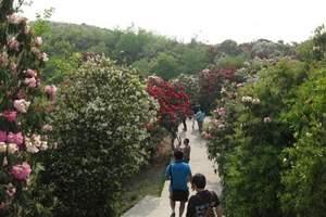 贵州旅游攻略|黄果树景区赏百里杜鹃、织金洞景区双飞六日游