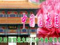 ★洛阳牡丹一日游_洛阳牡丹园门票_团购中国国花园门票多少钱