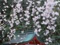 镇江到日本北海道旅游_镇江到北海道双飞浪漫体验4晚5日游
