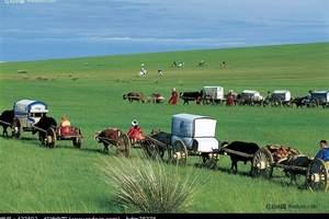 从呼和浩特到呼伦贝尔草原、室韦、莫尔道嘎、满洲里四日游