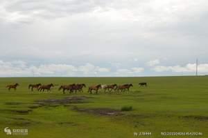 内蒙旅游、草原之恋--内蒙古希拉穆仁大草原、银肯响沙湾五天