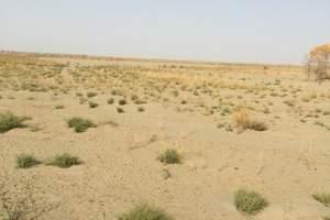 石家庄到内蒙古旅游(火车行程)……沙漠/草原/呼市六日游