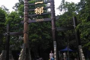 """周边游、广州游、增城白水寨""""中国第一瀑布""""、绿道单车一天"""