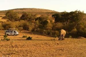 【南非+津巴布韦+赞比亚精致3国12日】北京出发到赞比亚旅游