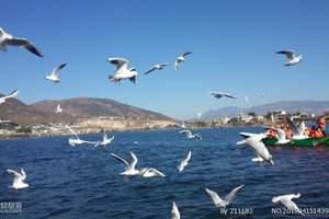 昆明版纳丽江环飞|昆大丽、版纳8天度假旅游团住洱海海景五星