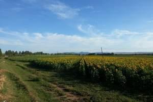 呼和浩特、希拉穆仁草原2日游,体验一晚蒙古包住宿