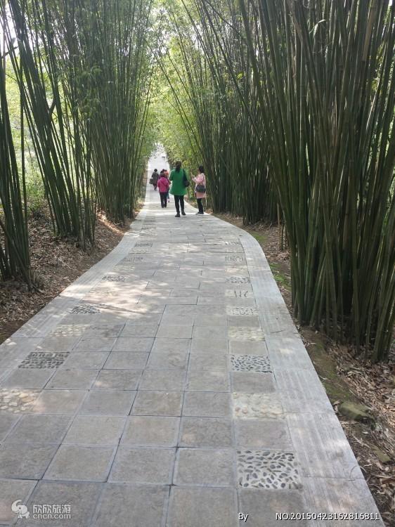 带小孩玩沙去哪玩?武汉报团去荆门漳河旅游(玩沙滩烧烤2日游)
