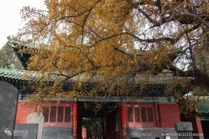 河南少林寺一日游