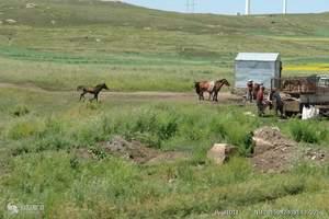 石家庄到内蒙古草原旅游——《呼伦贝尔大草原飞机6日游》
