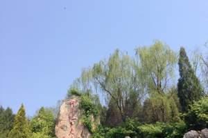 临沂有什么好玩的|大峡谷、萤光湖、蒙山纯玩二日游,周边游推荐