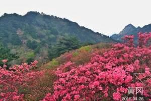 武汉到麻城龟峰山杜鹃花一日游