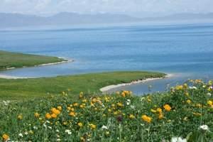 从新疆到伊犁草原四日游  新疆到那拉提赛里木湖旅游行程及报价