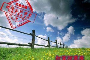北京出发到内蒙古赤峰贡格尔草原旅游:达里湖、石林双卧四日游