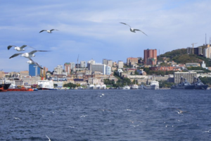哈尔滨到海参崴六日游_去俄罗斯旅游多少钱_需要办理什么手续