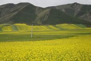 集安+五女峰+万亩油菜花海2日游