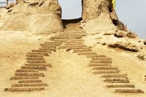 特价:银川出发到沙坡头沙湖影城岩画两日游(含1晚商务酒住宿)