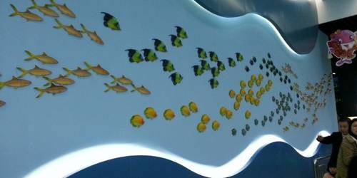 罗源湾海洋世界