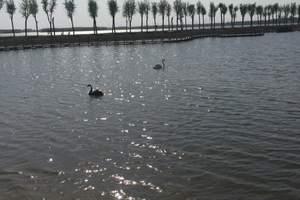 莲花湿地公园