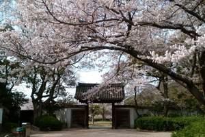 贵阳到日本东京名古屋富士山赏樱5日游