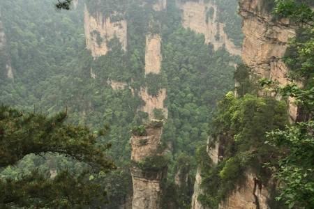深圳出发去张家界~长沙、张家界、杨家界、凤凰古城双高铁四天游