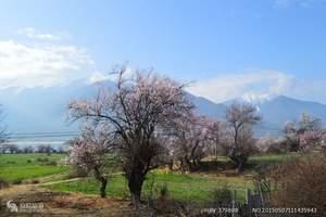 北京到西藏旅游:西藏 林芝 布达拉宫卧飞9日