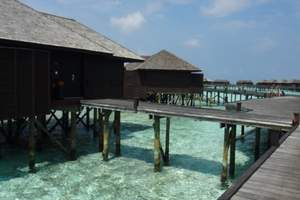 大连去马尔代夫旅游_马尔代夫美人蕉6日自由行价格
