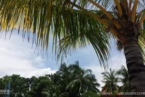沈阳到帕劳四晚五日自由游|沈阳到帕劳五日自由游多少钱
