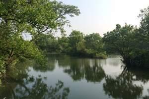 苏州到杭州一日游   西溪湿地-西湖游船