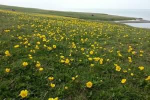 【火车环游北疆】喀纳斯、可可托海、那拉提、赛里木湖三卧8日游