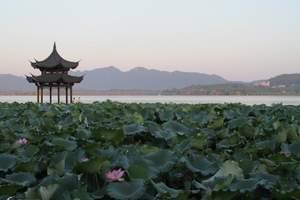 上海到杭州  周庄精品二日游       西湖+梦幻水乡