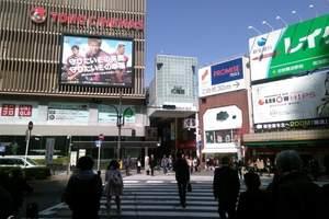 新【汤泉·印象】日本高端体验之旅7天 伊豆地区 3晚五星酒