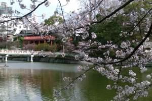 和悦·之星日本6日 两晚温泉酒店 大阪城公园看樱花 北青旅