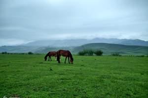 乌鲁木齐出发到伊犁那拉提、赛里木湖火车双卧二日游 赠薰衣草园