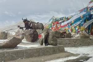成都进藏,林芝接团鲁朗林海、拉萨、日喀则6日游