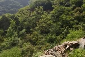 徐州到大汉王城芒砀山+地质公园1日游