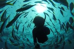 三亚潜水度假天堂三天自由行/游海南蜈支洲岛、天堂公园、亚龙湾