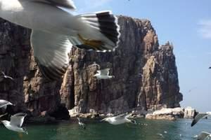北方第一高岛-青岛灵山岛休闲海岛一日游【给心灵放个假】